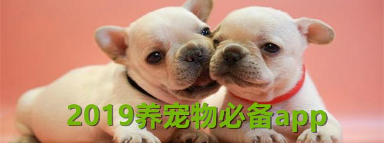 2019养宠物必备app