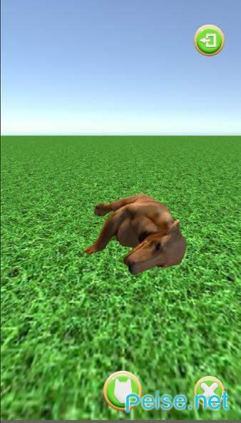 小狗去图4