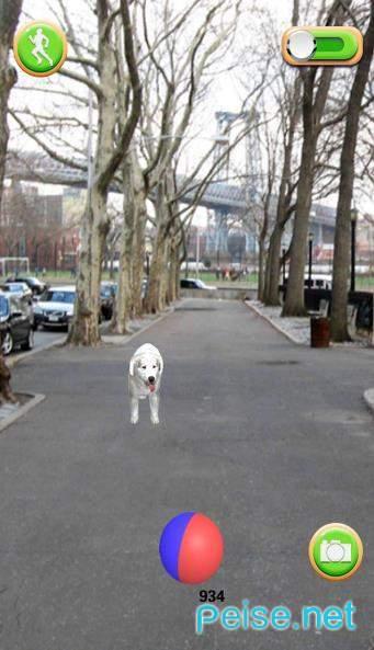 小狗去图2