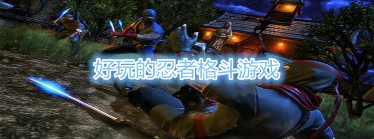 好玩的忍者格斗游戏