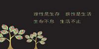 字体美化app