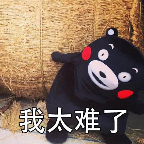 熊本熊我太難了表情包
