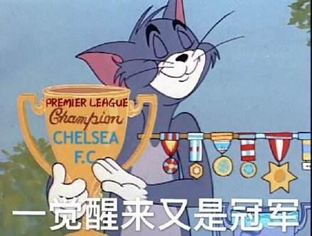 猫和老鼠单身冠军图片