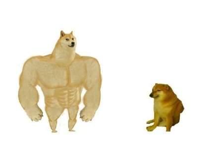 肌肉doge与小废狗表情包