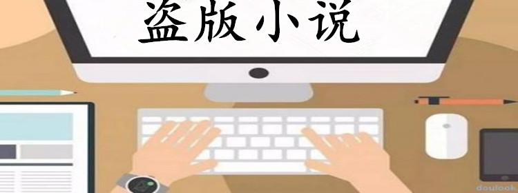 专门看盗版小说的app