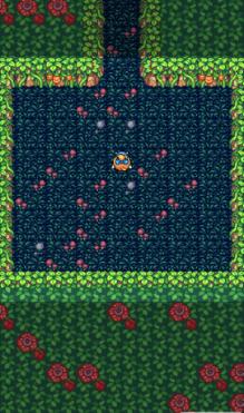 魔女的迷宫dx破解版图2
