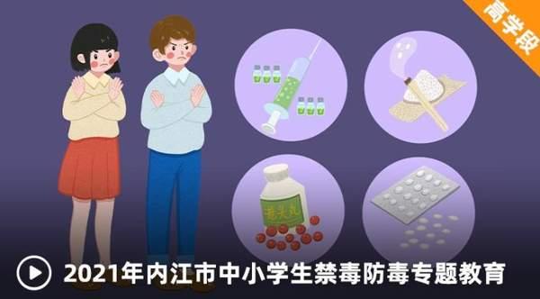 2021年内江市中小学生禁毒防毒专题