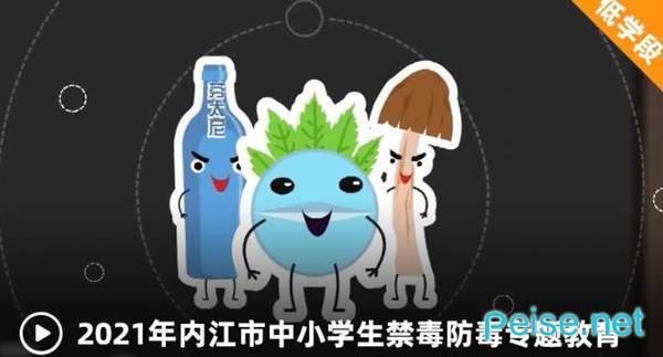 2021年内江市中小学生禁毒防毒专题图2